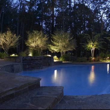 Poolside Trees